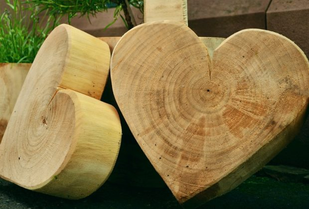 Why Learn Woodworking